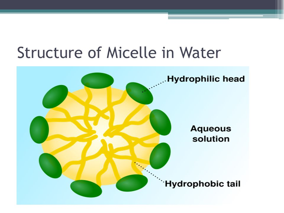 Structure of Micelle in Water