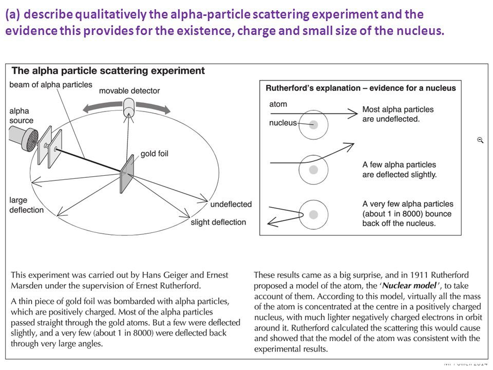Mr Powell 2014 Probing the Nucleus – Rutherford Scattering By firing alpha particles at a heavy gold nucleus Rutherford could easily see that atoms were mostly space with a large positive nucleus in the centre.