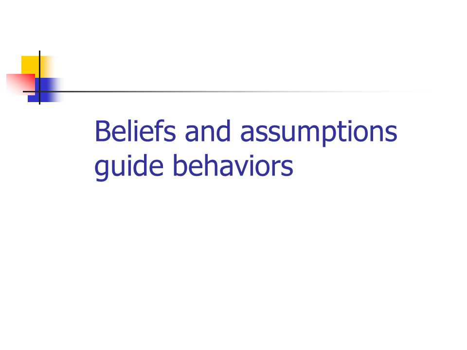 Beliefs and assumptions guide behaviors