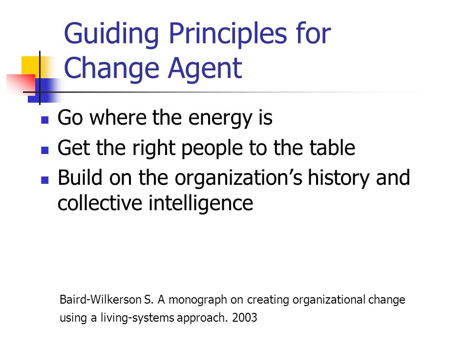 Guiding Principles for Change Agent Go where the energy is Get the right people to the table Build on the organizations history and collective intelli