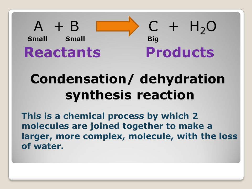 A + B C + H 2 O Condensation/ dehydration synthesis reaction ReactantsProducts This is a chemical process by which 2 molecules are joined together to make a larger, more complex, molecule, with the loss of water.