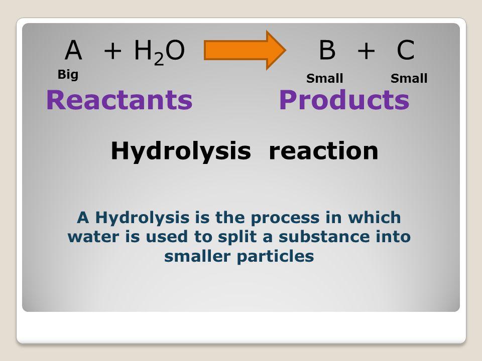 A + H 2 O B + C Reactants Products Big Small H2OH2O B C + A + Big condensation Hydrolysis Condensation vs.