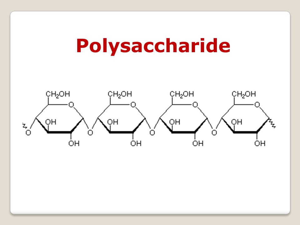Glycogen is a polysaccharide that is the principal storage form of glucose in animal and human cells.