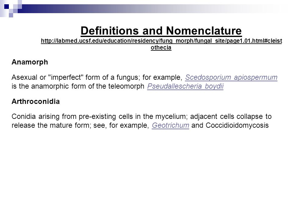 Definitions and Nomenclature http://labmed.ucsf.edu/education/residency/fung_morph/fungal_site/page1.01.html#cleist othecia Anamorph Asexual or