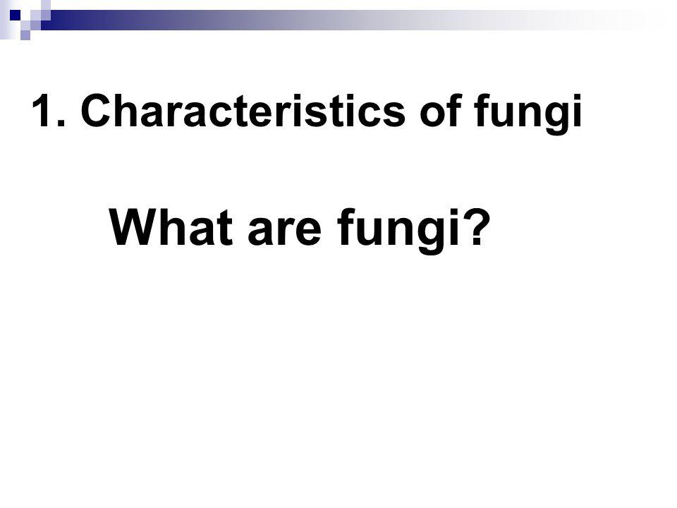 Species of Fungi >1,000,000 species ~400 pathogenic