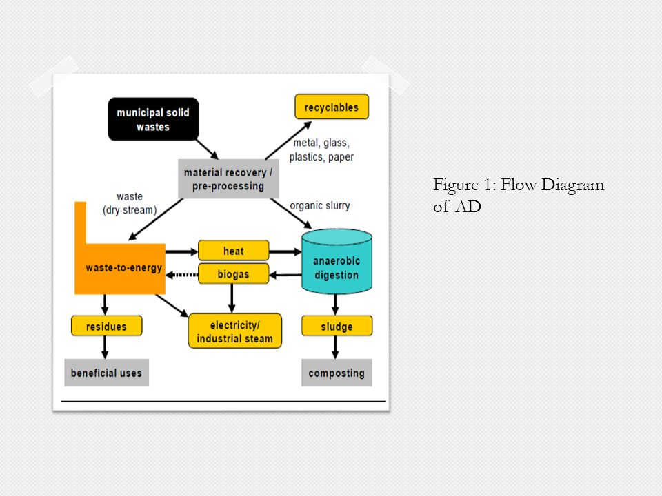 Figure 1: Flow Diagram of AD