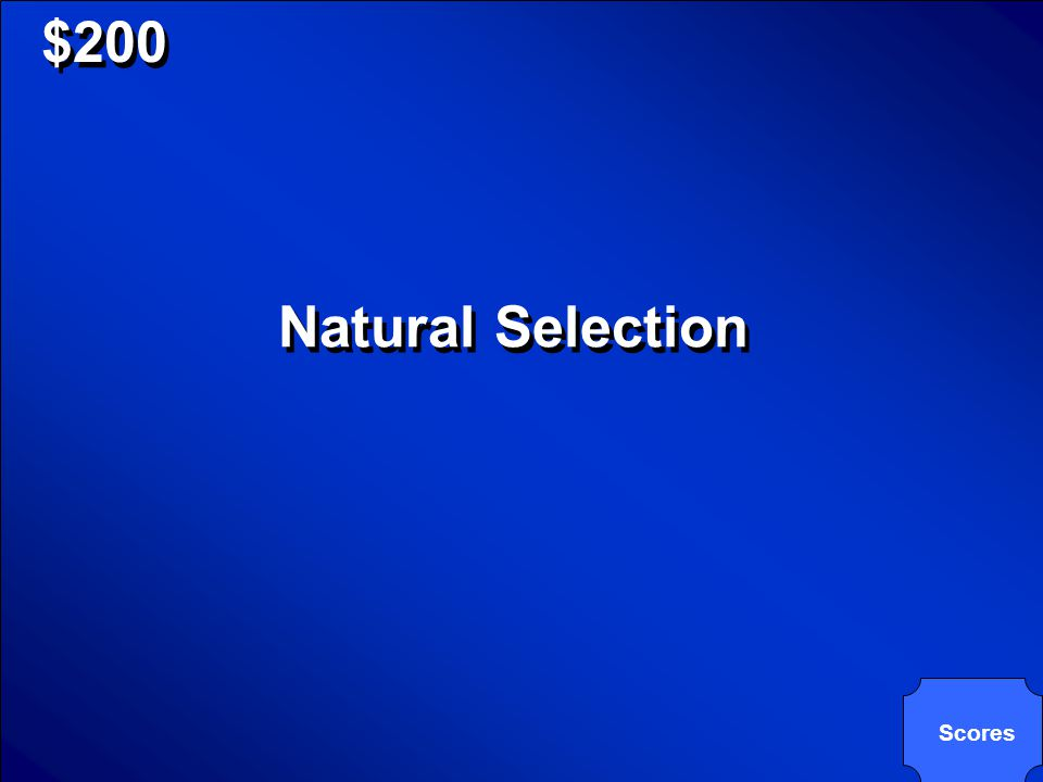 © Mark E. Damon - All Rights Reserved $200 Natural Selection Scores