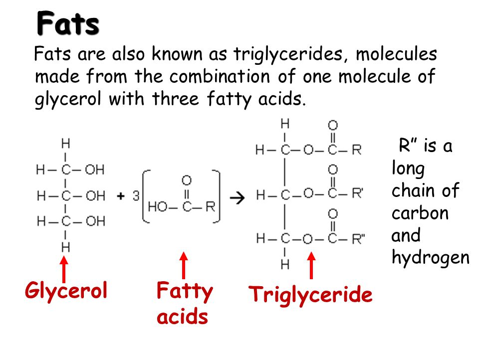 Fats Fats are also known as triglycerides, molecules made from the combination of one molecule of glycerol with three fatty acids. GlycerolFatty acids