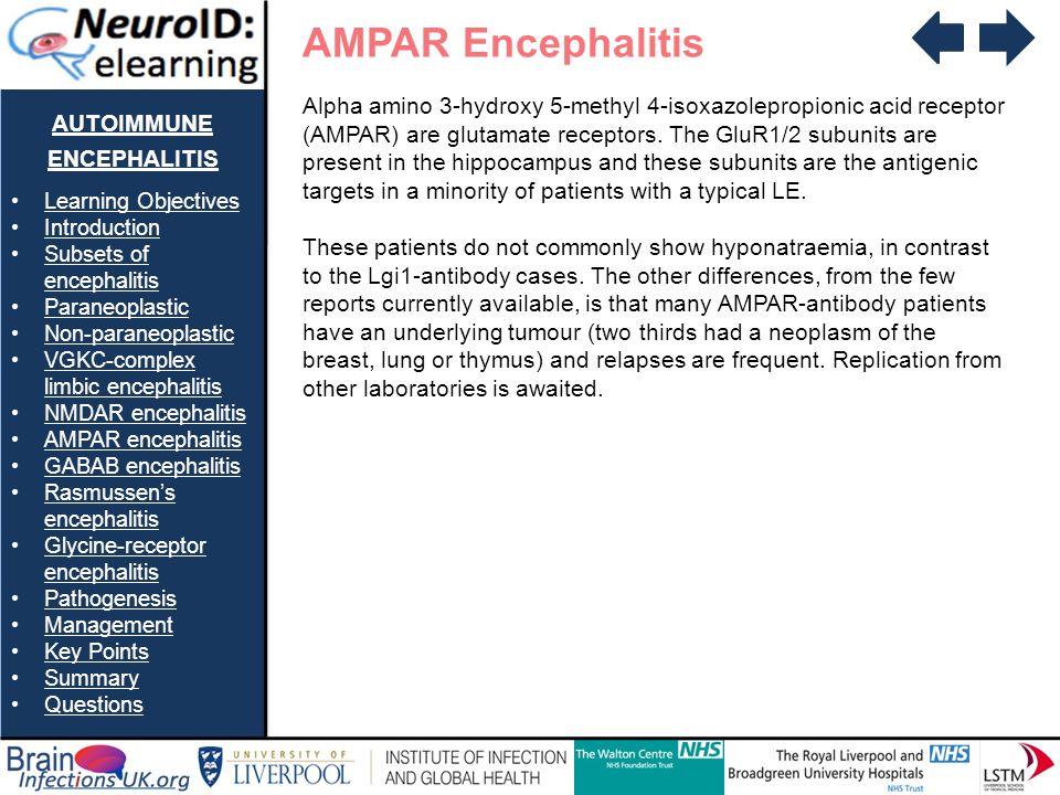 AUTOIMMUNE ENCEPHALITIS Learning Objectives Introduction Subsets of encephalitisSubsets of encephalitis Paraneoplastic Non-paraneoplastic VGKC-complex limbic encephalitisVGKC-complex limbic encephalitis NMDAR encephalitis AMPAR encephalitis GABAB encephalitis Rasmussens encephalitisRasmussens encephalitis Glycine-receptor encephalitisGlycine-receptor encephalitis Pathogenesis Management Key Points Summary Questions AMPAR Encephalitis Alpha amino 3-hydroxy 5-methyl 4-isoxazolepropionic acid receptor (AMPAR) are glutamate receptors.