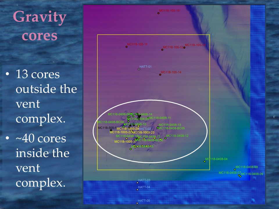 Gravity cores 13 cores outside the vent complex. ~40 cores inside the vent complex.