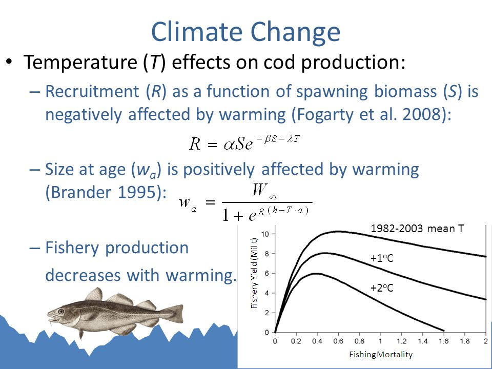 Climate Change Temperature (T) effects on cod production: – Recruitment (R) as a function of spawning biomass (S) is negatively affected by warming (Fogarty et al.