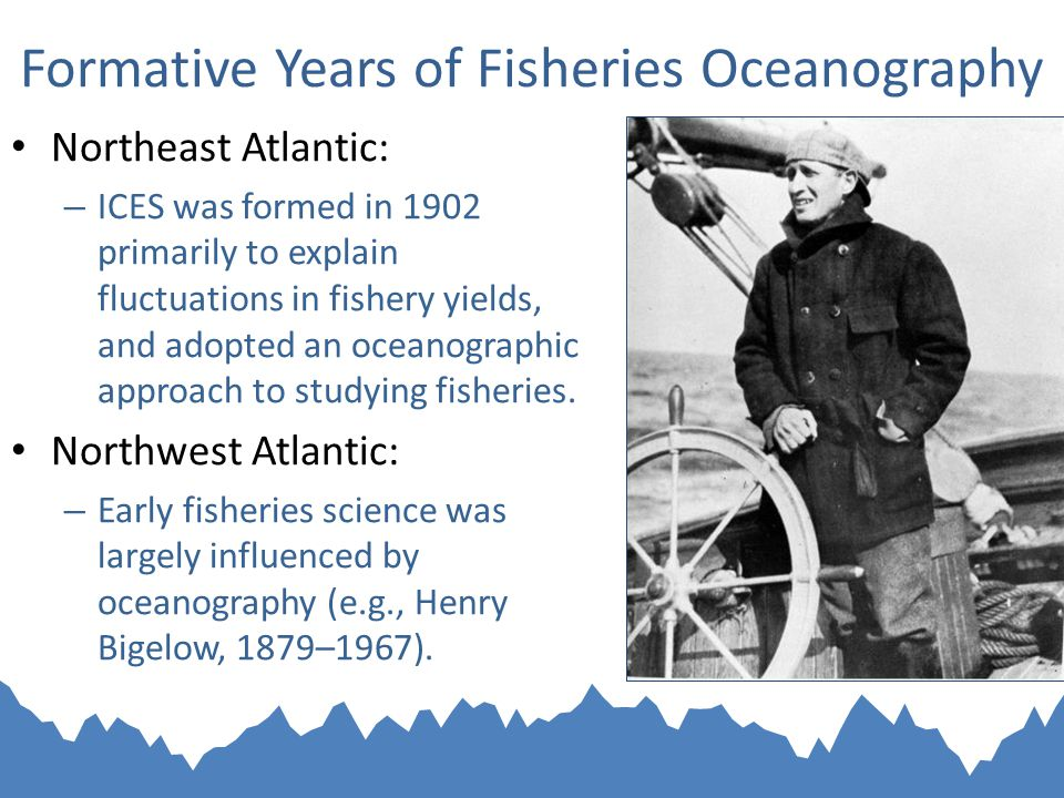 Formative Years of Fisheries Oceanography Northeast Atlantic: – ICES was formed in 1902 primarily to explain fluctuations in fishery yields, and adopted an oceanographic approach to studying fisheries.
