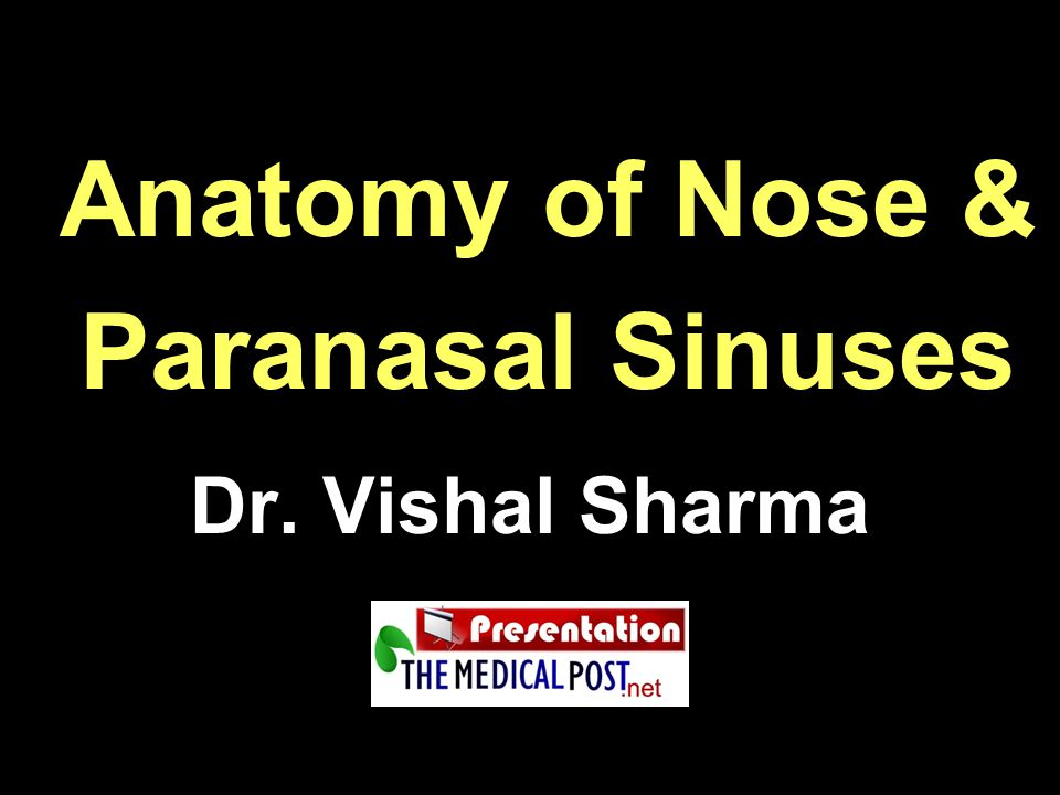 Anatomy of Nose & Paranasal Sinuses Dr. Vishal Sharma