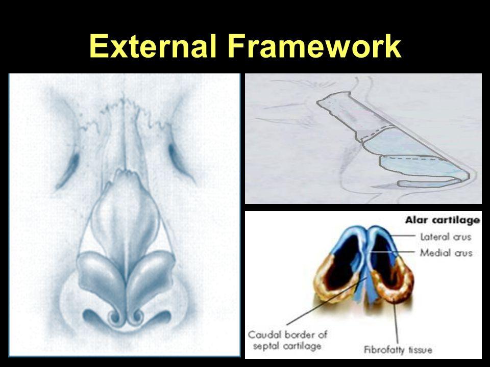External Framework