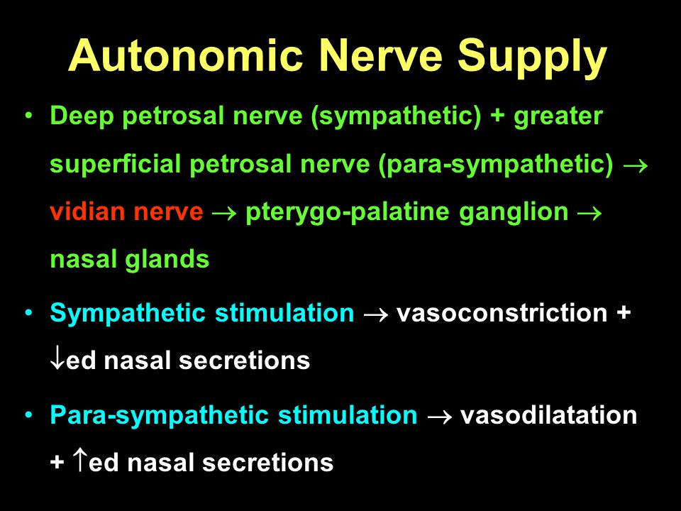 Autonomic Nerve Supply Deep petrosal nerve (sympathetic) + greater superficial petrosal nerve (para-sympathetic) vidian nerve pterygo-palatine ganglio
