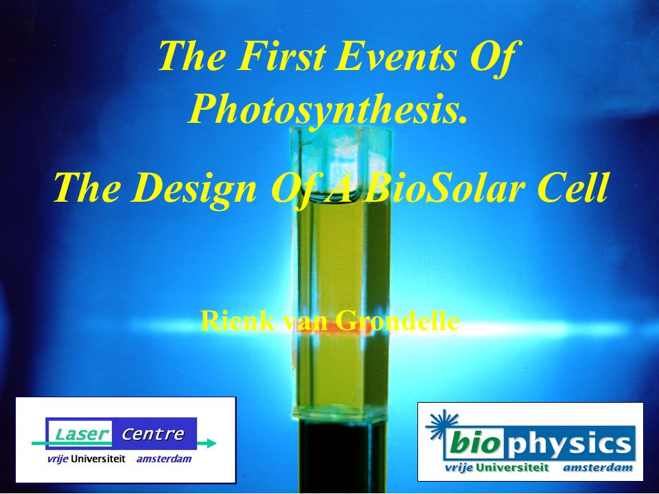 Photosynthesis Stores About 8x The Total Worlds Energy Need