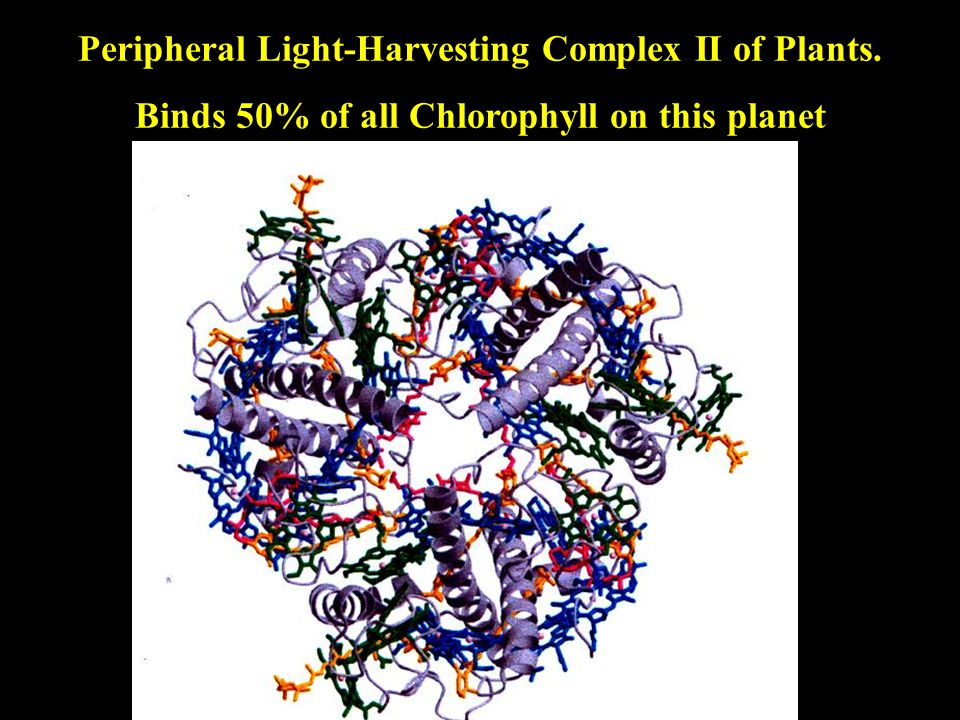 From Photosynthesis to Artificial Photosynthesis The major design principles of photosynthesis