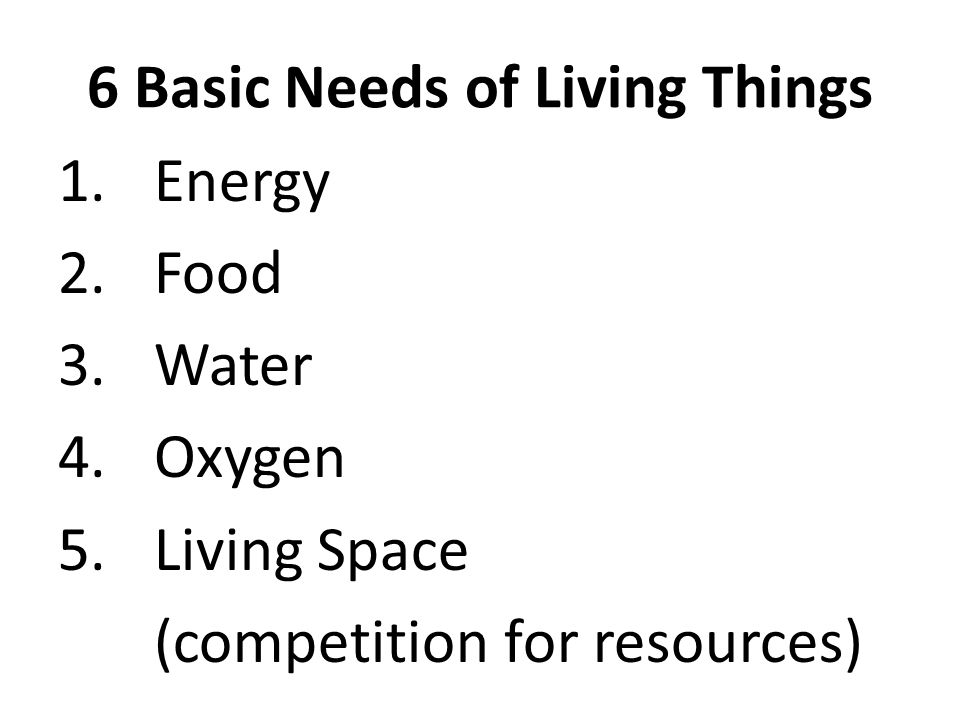 6 Basic Needs of Living Things 1.Energy 2.Food 3.Water 4.Oxygen 5.Living Space (competition for resources)