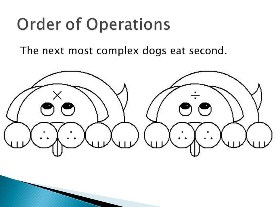 The next most complex dogs eat second. ×÷