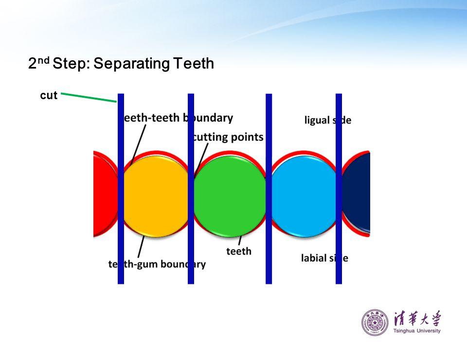 cut 2 nd Step: Separating Teeth