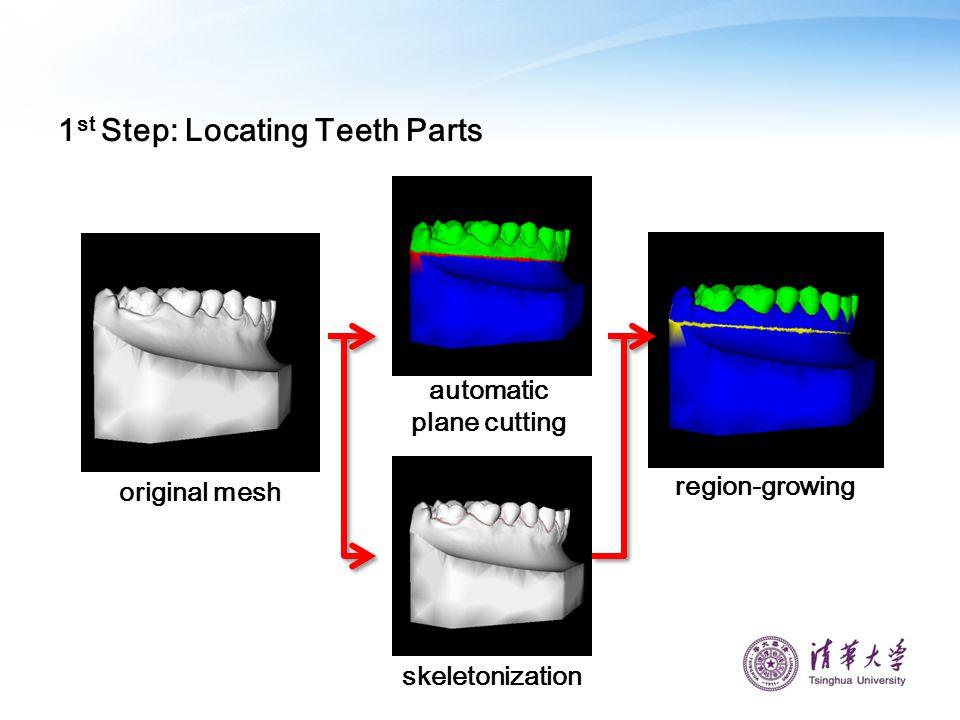 1 st Step: Locating Teeth Parts automatic plane cutting region-growing skeletonization original mesh
