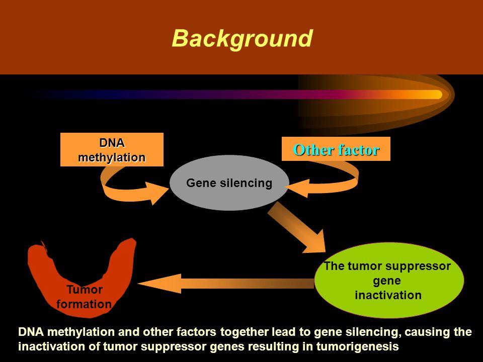 Result 2 The four genes mRNA expression electrophoresis DAPK RARβ2 PTEN RASSF1A M DM0901 100bpDNA marker; 1,2: nodular goiter; 3,4: adenoma; 5: Hashimoto s thyroiditis; 6,7: thyroid cancer; RT-PCR product of 351bp; product of β-actin 550bp; M DM0901 100bpDNA marker; 1,2: nodular goiter; 3,4: adenoma;5,6,7: thyroid cancer; RT-PCR product of 335bp; product of β-actin 550bp;
