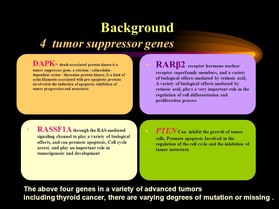 Background 4 tumor suppressor genes DAPK- - death-associated protein kinase is a tumor suppressor gene, a calcium / calmodulin- dependent serine / threonine protein kinase, Is a kind of actin filaments associated with pro-apoptotic proteins involved in the induction of apoptosis, inhibition of tumor progression and metastasis RARβ2 receptor hormone nuclear receptor superfamily members, and a variety of biological effects mediated by retinoic acid, A variety of biological effects mediated by retinoic acid, plays a very important role in the regulation of cell differentiation and proliferation process RASSF1A through the RAS mediated signaling channel to play a variety of biological effects, and can promote apoptosis, Cell cycle arrest, and play an important role in tumorigenesis and development.
