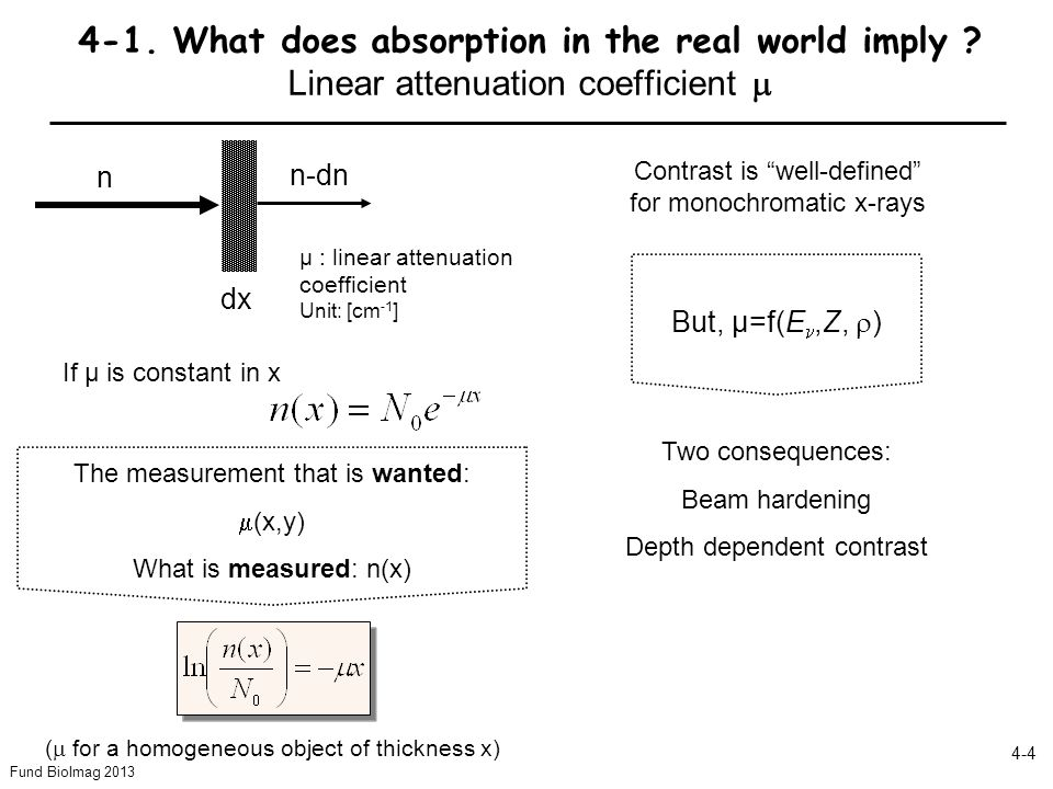 Fund BioImag 2013 4-4 4-1.What does absorption in the real world imply .