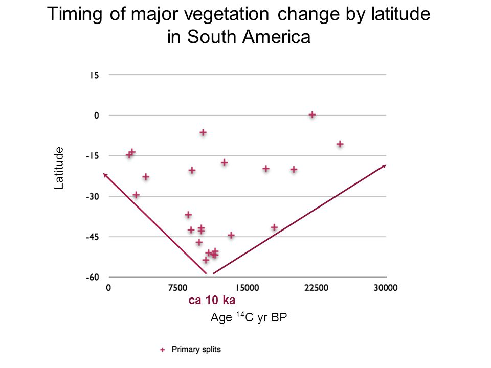 Age 14 C yr BP Latitude Timing of major vegetation change by latitude in South America ca 10 ka