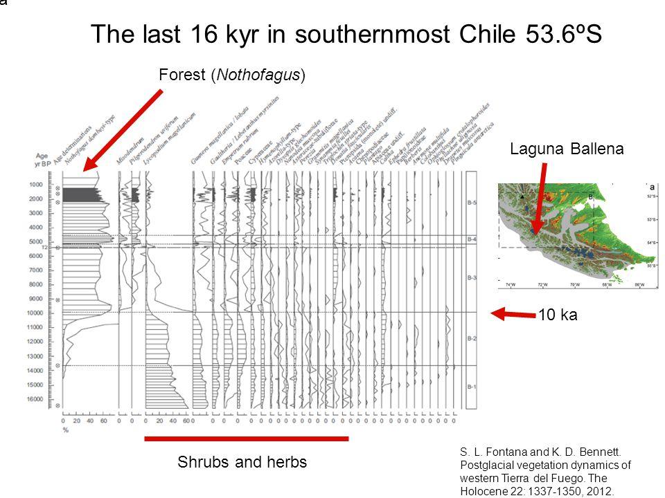The last 16 kyr in south-eastern Brazil 29.5ºS V.Jeske-Pieruschka and H.