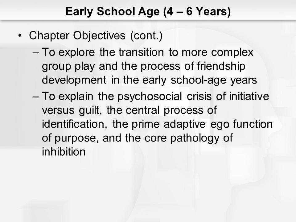 Early School Age (4 – 6 Years) Chapter Objectives (cont.) –To explore the transition to more complex group play and the process of friendship developm