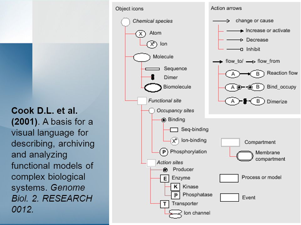29 Cook D.L. et al. (2001). A basis for a visual language for describing, archiving and analyzing functional models of complex biological systems. Gen