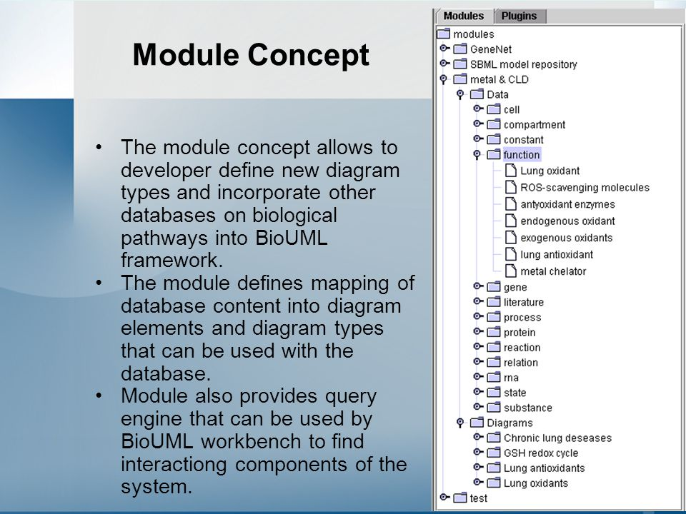54 Module Concept The module concept allows to developer define new diagram types and incorporate other databases on biological pathways into BioUML framework.