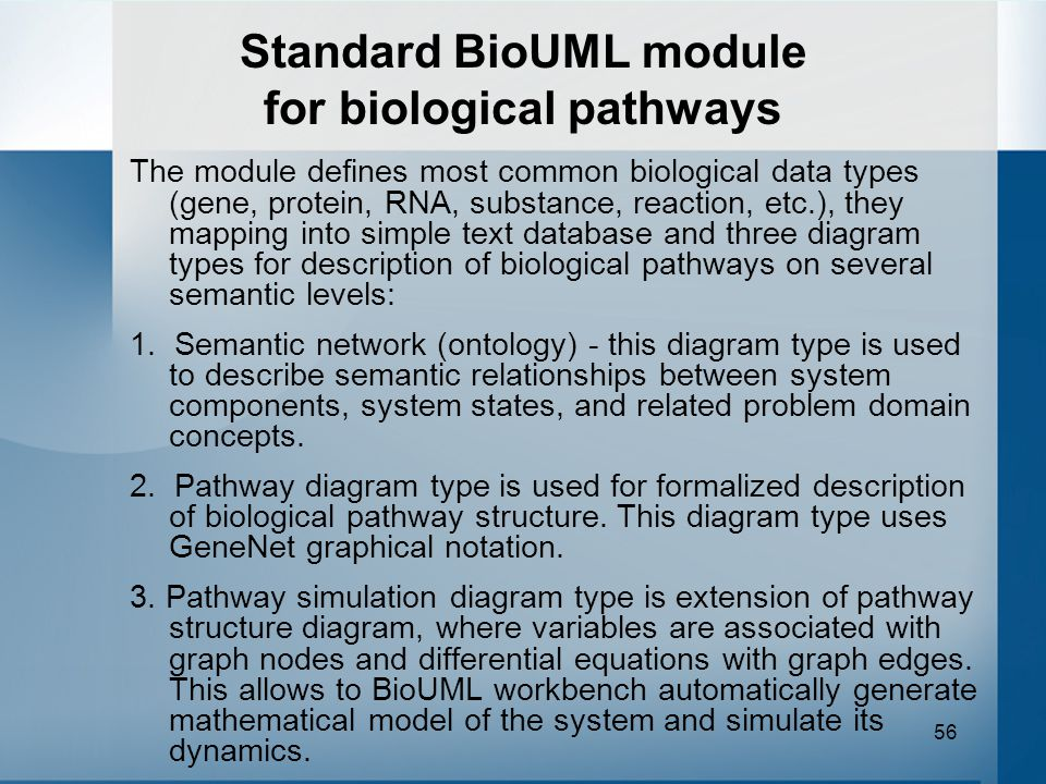 56 Standard BioUML module for biological pathways The module defines most common biological data types (gene, protein, RNA, substance, reaction, etc.), they mapping into simple text database and three diagram types for description of biological pathways on several semantic levels: 1.