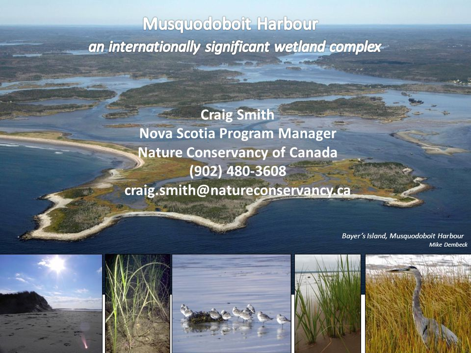Bayers Island, Musquodoboit Harbour Mike Dembeck Craig Smith Nova Scotia Program Manager Nature Conservancy of Canada (902) 480-3608 craig.smith@natur