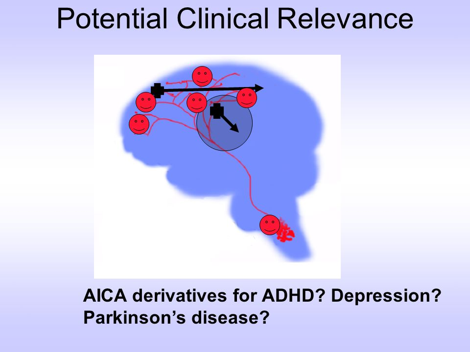 Potential Clinical Relevance AICA derivatives for ADHD? Depression? Parkinsons disease?