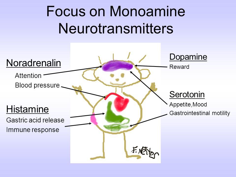 Focus on Monoamine Neurotransmitters Noradrenalin Attention Blood pressure Histamine Gastric acid release Immune response Dopamine Reward Serotonin Ap