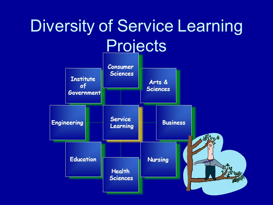 Diversity of Service Learning Projects Institute of Government Institute of Government Engineering Education Health Sciences Health Sciences Nursing Business Arts & Sciences Arts & Sciences Consumer Sciences Consumer Sciences Service Learning Service Learning