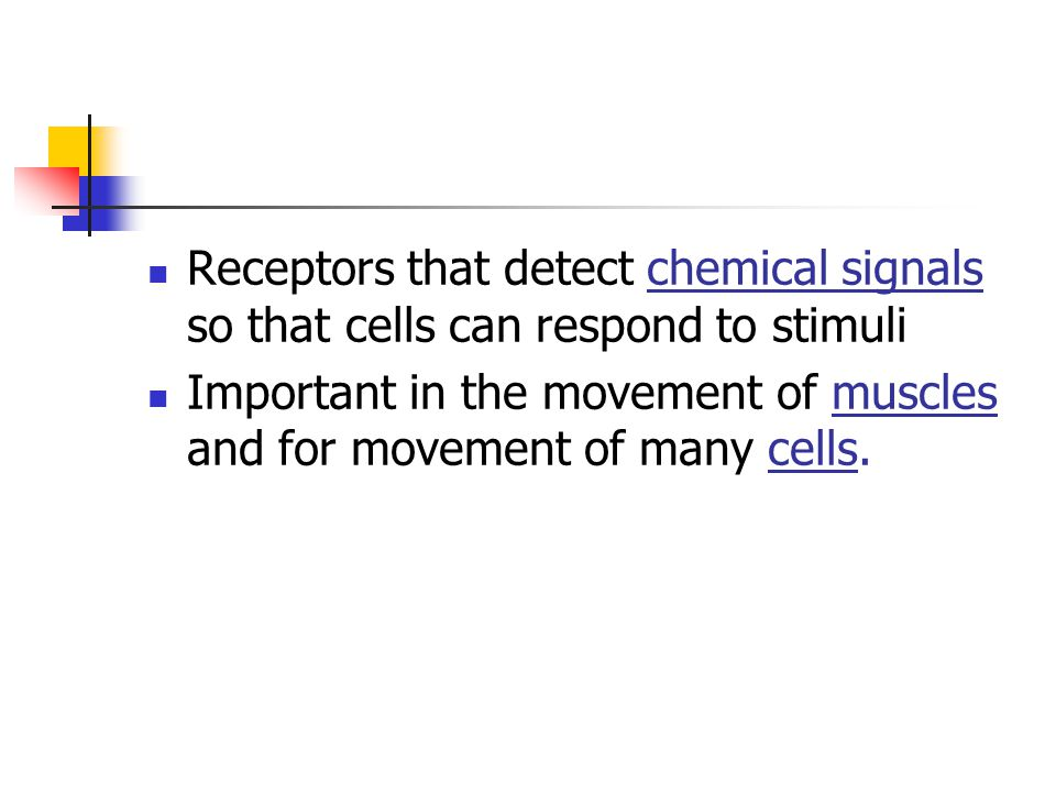 Receptors that detect chemical signals so that cells can respond to stimuli Important in the movement of muscles and for movement of many cells.