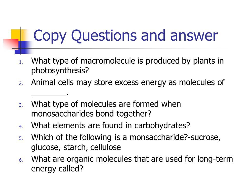 Copy Questions and answer 1. What type of macromolecule is produced by plants in photosynthesis? 2. Animal cells may store excess energy as molecules