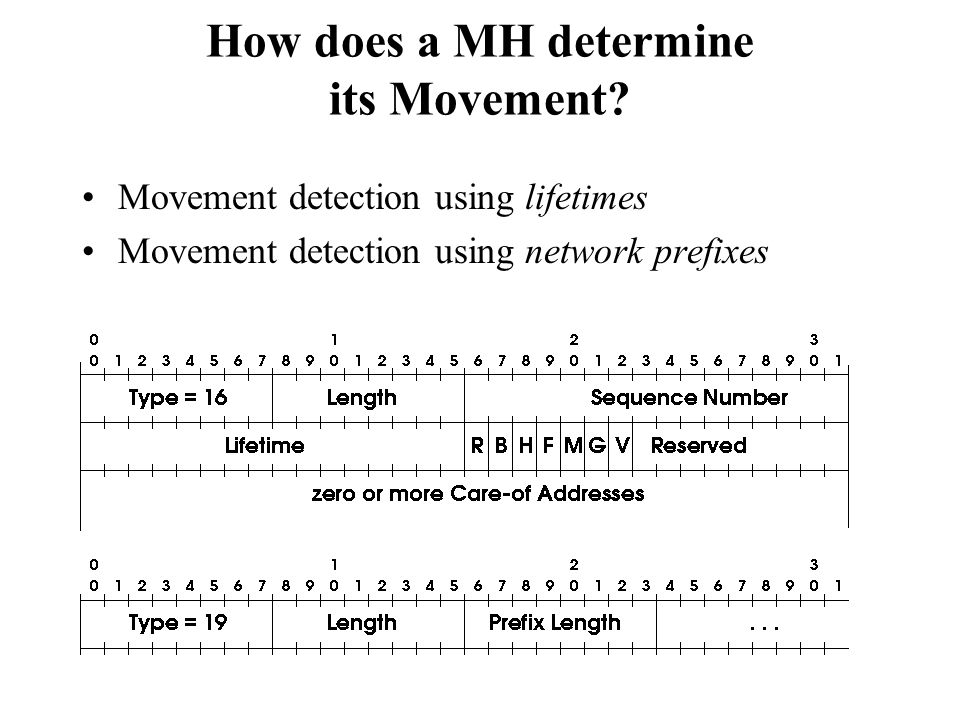 How does a MH determine its Movement? Movement detection using lifetimes Movement detection using network prefixes