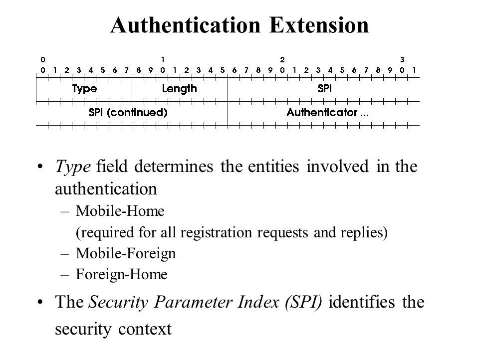 Authentication Extension Type field determines the entities involved in the authentication –Mobile-Home (required for all registration requests and re