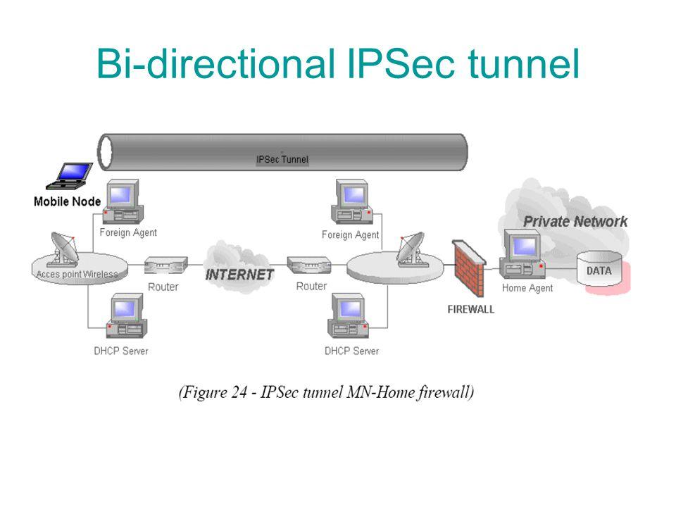 Bi-directional IPSec tunnel