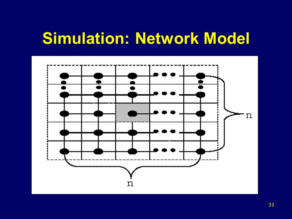 31 Simulation: Network Model