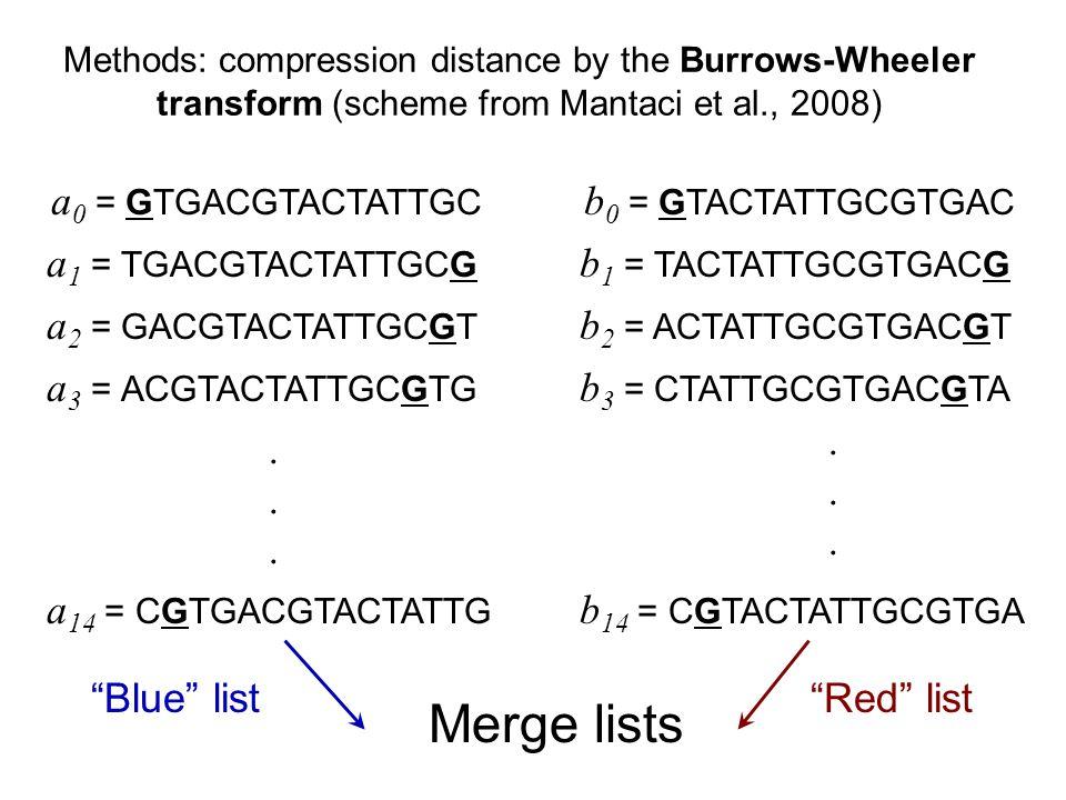 Methods: compression distance by the Burrows-Wheeler transform (scheme from Mantaci et al., 2008) a 0 = GTGACGTACTATTGC b 0 = GTACTATTGCGTGAC a 1 = TGACGTACTATTGCG b 1 = TACTATTGCGTGACG a 2 = GACGTACTATTGCGT b 2 = ACTATTGCGTGACGT a 3 = ACGTACTATTGCGTG b 3 = CTATTGCGTGACGTA............