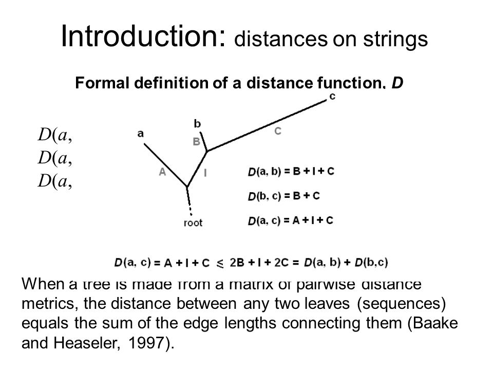 Introduction: distances on strings D(a, b) = 0 a = b, the identity axiom D(a, b) = D(b, a), the symmetry axiom D(a, b) + D(b, c) D(a, c), the triangle inequality Formal definition of a distance function, D Tree Additivity When a tree is made from a matrix of pairwise distance metrics, the distance between any two leaves (sequences) equals the sum of the edge lengths connecting them (Baake and Heaseler, 1997).