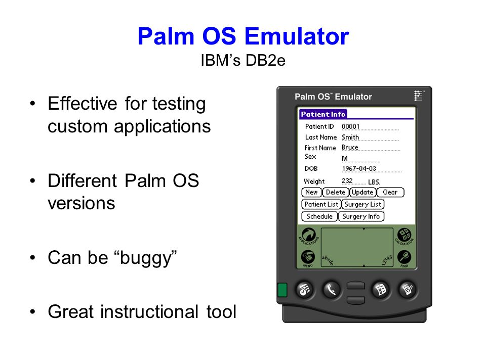 Palm OS Emulator IBMs DB2e Effective for testing custom applications Different Palm OS versions Can be buggy Great instructional tool