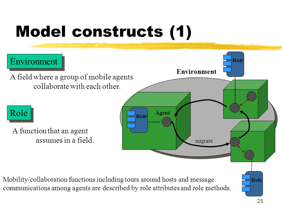 25 Model constructs (1) A function that an agent assumes in a field.