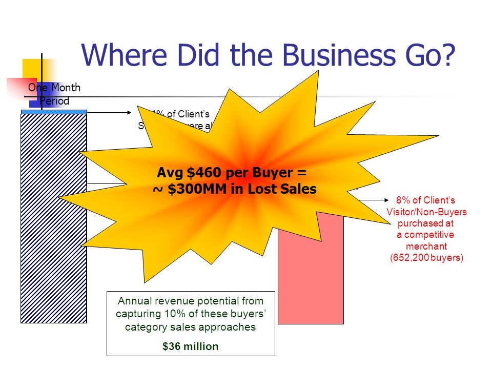 Where Did the Business Go? Client Shoppers 10 Million+ 4% of Clients Shoppers were also Buyers 96% of Clients Shoppers became Visitor Non-Buyers (VNBs