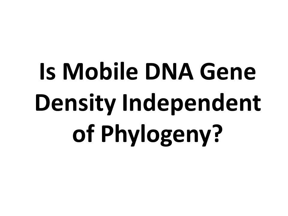 Is Mobile DNA Gene Density Independent of Phylogeny